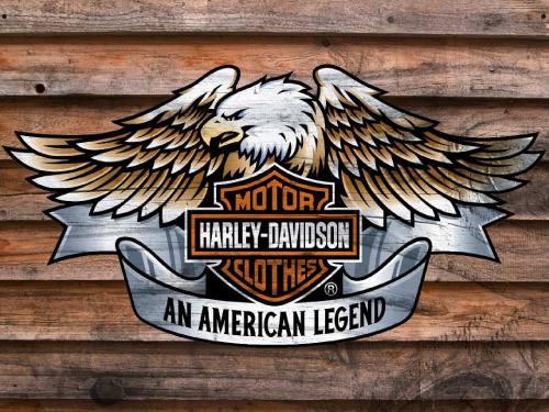 Placa Decorativa Vintage Retro Harley Davidson Legend PDV097