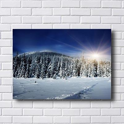 Quadro Paisagem Neve