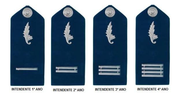 Platinas da AFA - Intendente (PAR)