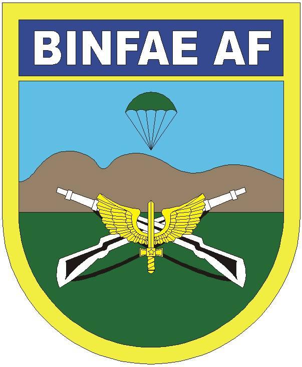 DOM - BINFAE AF