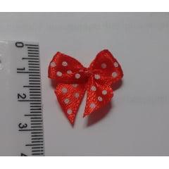 Laços Gordinhos 2,5 cm